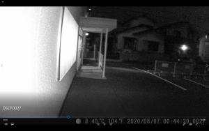 トレイルカメラ②夜間 - コピー